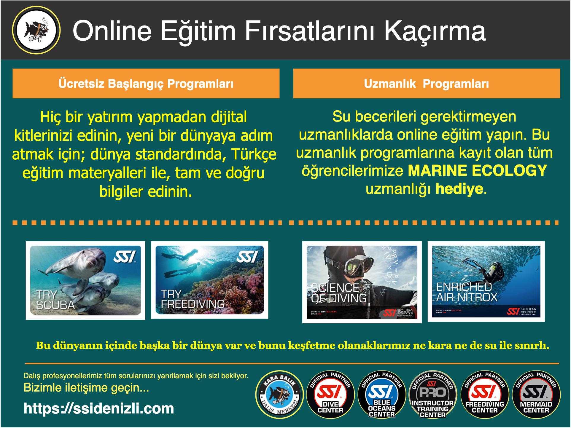 Online Eğitim Fırsatları